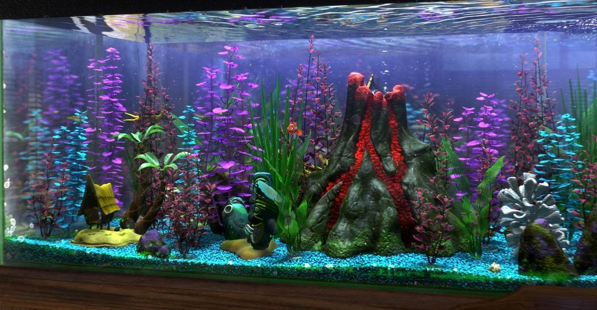 Finding Nemo Fish Tank The Aquarium Club